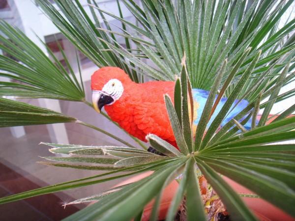 Papagei Ara Dekofigur 32 cm