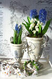 Blumen_Amphoren